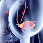 Причины, последствия и меры предотвращения слабости мочевого пузыря в преклонном возрасте.